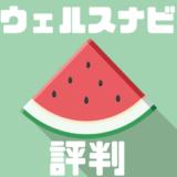 【ウェルスナビ(WealthNavi)の口コミ・評判】メリット・デメリットを紹介!